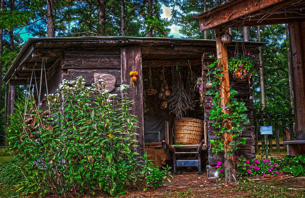 abri de jardin rustique - Cabanes De Jardin Originales