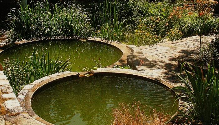Am nager un bassin poissons dans un jardin vivre au vert for Eau verte bassin exterieur
